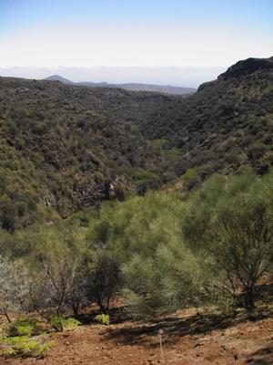 Bild den Barranco de los Cernicalos bergab