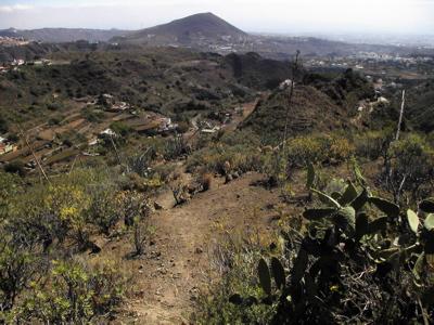 Anfang des Barranco de los Cernicalos