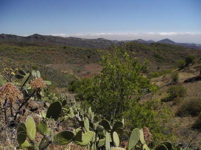 Fotor Richtung Nordosten von Gran Canaria