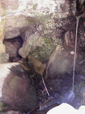 Quelle auf Gran Canaria