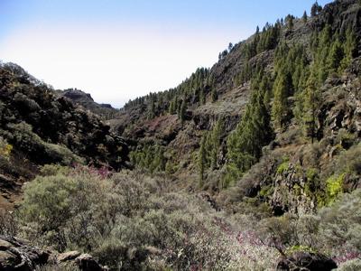 Foto des oberen Teils des Barrancos