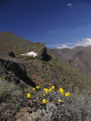 Wanderung zu einer Höhlenwohnung auf Gran Canaria