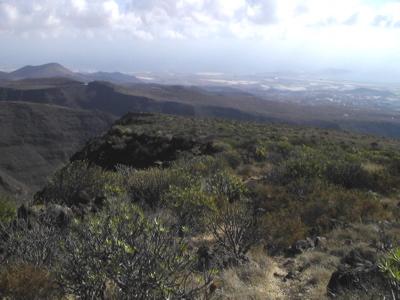 Im Osten von Gran Canaria liegt der Barranco de Guayadeque