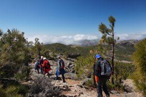 Geführtes Wandern auf Gran Canaria