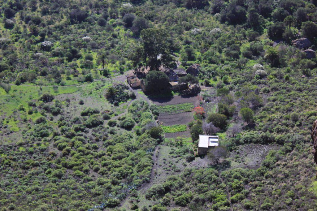 Ausschnitt vom Bandama Krater mit Feldern und Einsiedelei