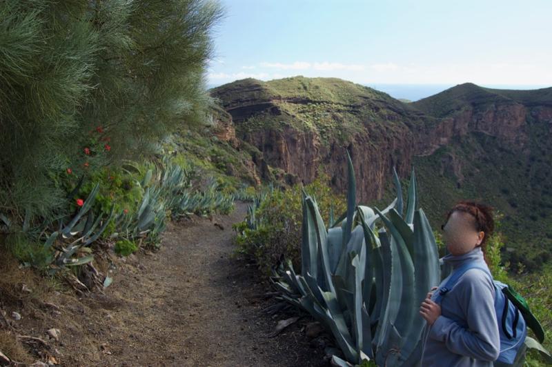 Bergabweg mit Rollsplit, Lapili, zum Kratergrund von Bandama